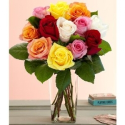 20 Multicolor Roses In Vase