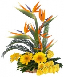 Gorgeous Flower  Arrangement 19