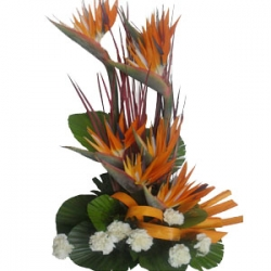 Gorgeous Flower Arrangement 212