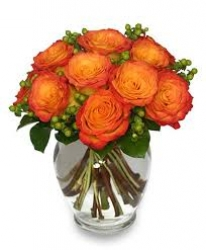 Orange Roses Arrangement