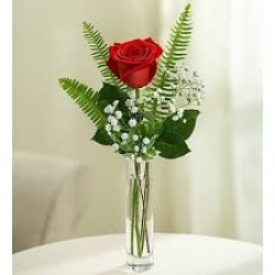 Single Rose In A Glass Vase