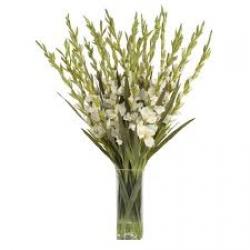Simplicity Bouquet