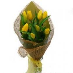 Yellow Tulip Bunch