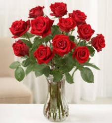 15 Red Roses In Vase