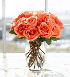 12 Orange Roses In Vase