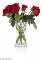 5 Roses In Vase