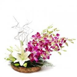 Ultimate Flower
