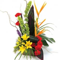 Flower  Of Paradise 2