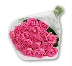 Pretty  Pink 2