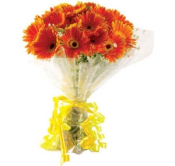 12 Orange Gerbera Bouquet