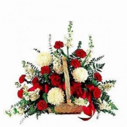 Jasmine Flowers Send Flowers To India Send Birthday