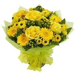 Yellow Rose And Yellow Gerbera