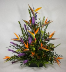 Arrangement Of Bird Of Paradise