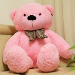Junior Teddy Bear  18 Inches