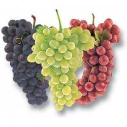 Grapes ( 3 Kg)