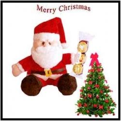 Christmas Gift Hamper  1