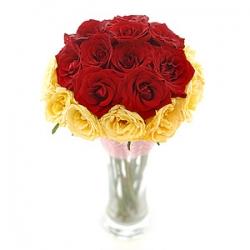 Charming Rosa