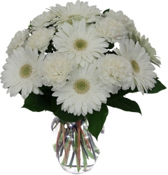 White Gerbera Vase Arrangement