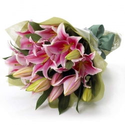 Gift Wrapped Pink Lilies