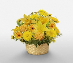 Yellow Star Basket