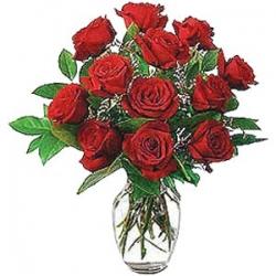 12 Red Roses In Vase