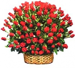 50 Red Roses Arrangement  (j)