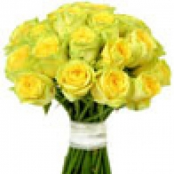 Hand Tied Bunch Of  50 Yellow Roses