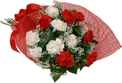Red N White Carnation Bouquet
