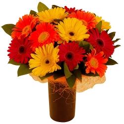 Love Gebera Bouquet